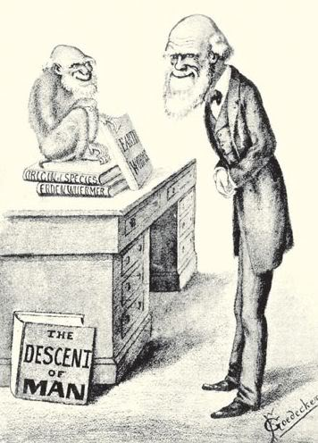 Cartoon image of Charles Darwin and his Books